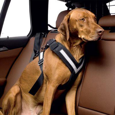 ZOOSHOP.ONLINE - Zoopreču internetveikals - Kleinmetall Allsafe automašīnas drošības josta sunim M