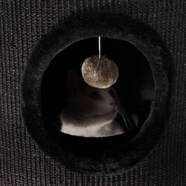 ZOOSHOP.ONLINE - Интернет-магазин зоотоваров - Когтеточка-домик для кошек Diogenes XL черный