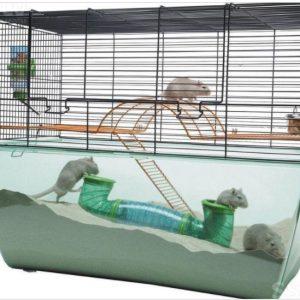 ZOOSHOP.ONLINE - Zoopreču internetveikals - SAVIC Habitat XL būris