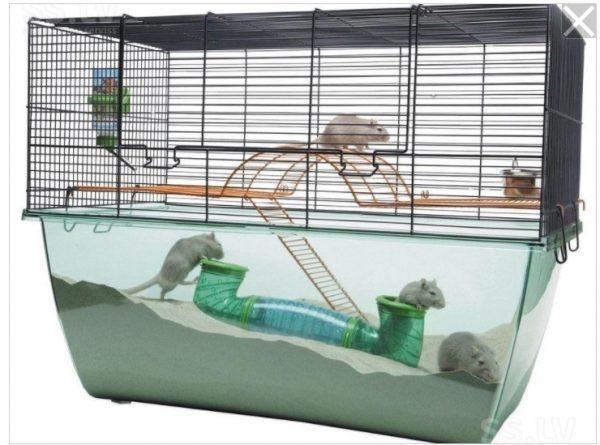 ZOOSHOP.ONLINE - Интернет-магазин зоотоваров - SAVIC Habitat XL клетка