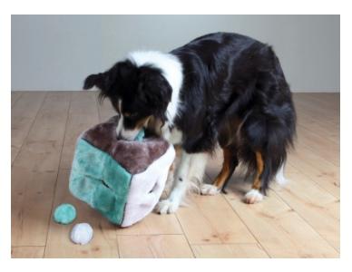 ZOOSHOP.ONLINE - Zoopreču internetveikals - Karlie Easy Step trepe suņiem 43 x 41 x 29 cm