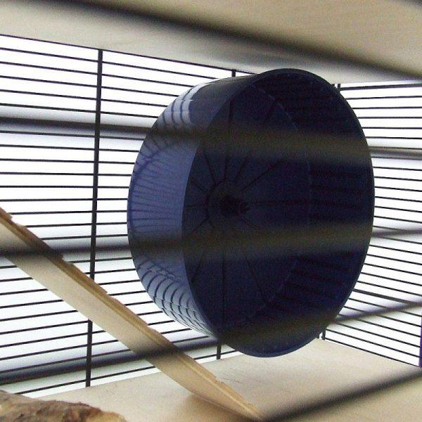ZOOSHOP.ONLINE - Интернет-магазин зоотоваров - Skyline клетка Fun Area Leon   67 x  36,5 x В 65 см