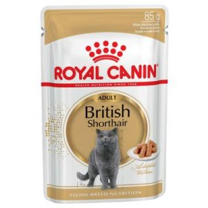 ZOOSHOP.ONLINE - Zoopreču internetveikals - Royal Canin Breed British Shorthair Adult mērcē 12 x 85 gr