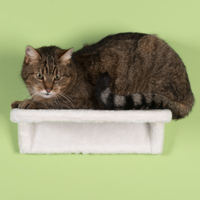 ZOOSHOP.ONLINE - Интернет-магазин зоотоваров - Настенная плюшевая кровать для кошек