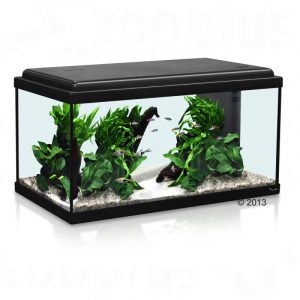 ZOOSHOP.ONLINE - Интернет-магазин зоотоваров - Aquatlantis Advance LED 60