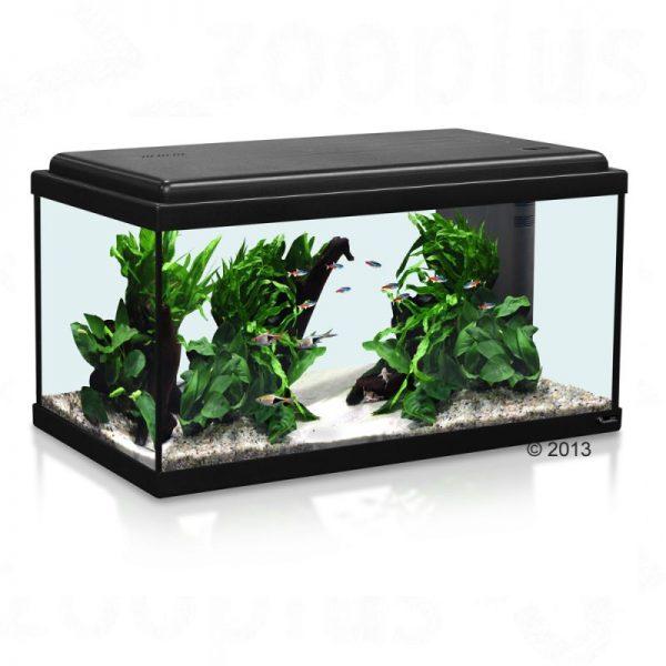 ZOOSHOP.ONLINE - Интернет-магазин зоотоваров - Aquatlantis Advance LED 60