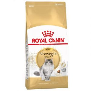 ZOOSHOP.ONLINE - Zoopreču internetveikals - Royal Canin Breed Norwegian  Forest cat Adult 10 kg
