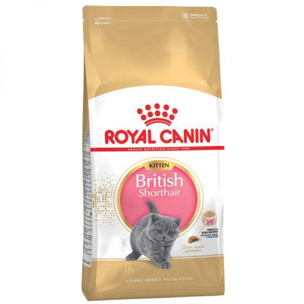 ZOOSHOP.ONLINE - Интернет-магазин зоотоваров - Royal Canin British Shorthair Kitten 10kg