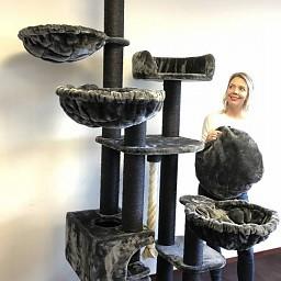 ZOOSHOP.ONLINE - Интернет-магазин зоотоваров - Кошачье дерево Мечта Де Люкс черная линия (темно-серый). Cat Tree Catdream de Luxe Blackline Dark Grey