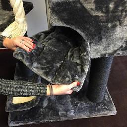 ZOOSHOP.ONLINE - Интернет-магазин зоотоваров - Кошачье дерево Килиманджаро де Люкс черная линия (темно-серый). Cat Tree Kilimandjaro de Luxe Blackline Dark Grey
