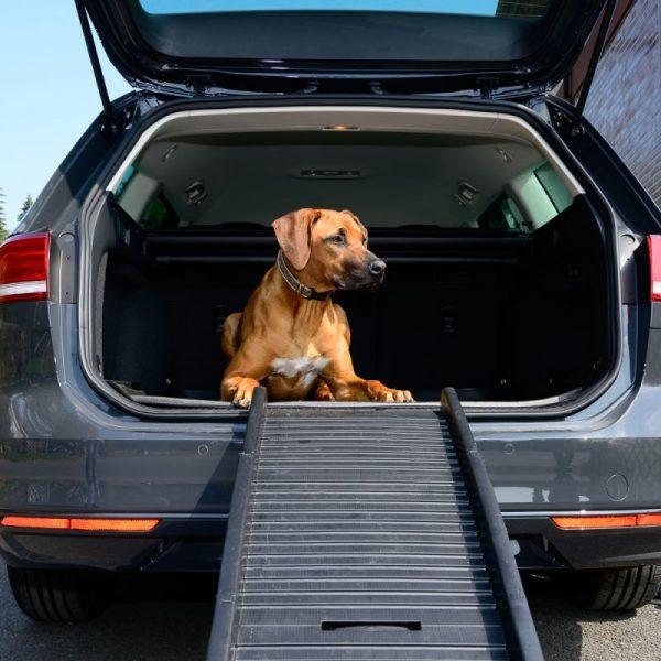 ZOOSHOP.ONLINE - Интернет-магазин зоотоваров - Рампа для собак Travel Pro