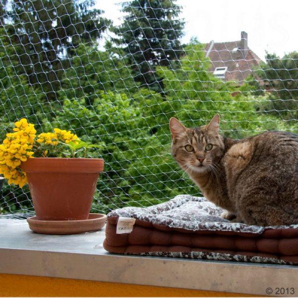 ZOOSHOP.ONLINE - Интернет-магазин зоотоваров - Защитная сетка для кошек 6 x 3 м (прозрачная)
