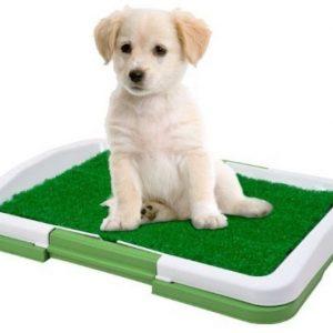 ZOOSHOP.ONLINE - Zoopreču internetveikals - Tualete suņiem Vangaloo 47 X 34 см