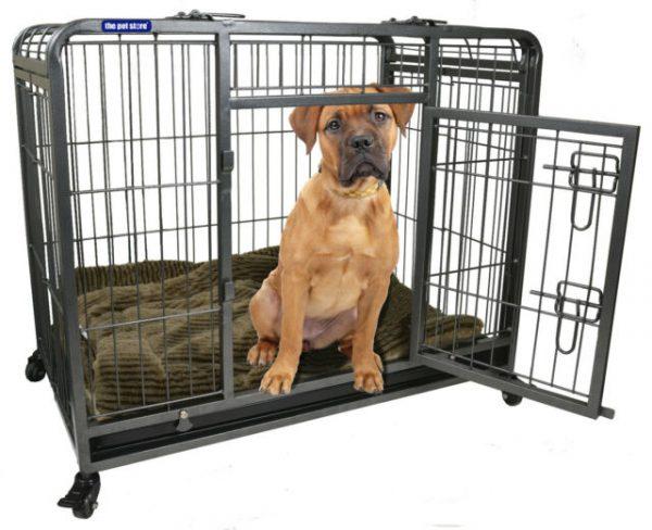 ZOOSHOP.ONLINE - Интернет-магазин зоотоваров - Клетка для собак со съемными колесами , размер M