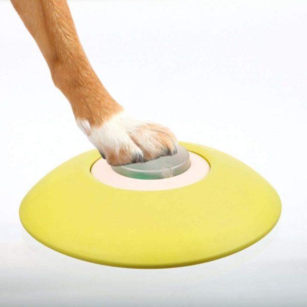 ZOOSHOP.ONLINE - Интернет-магазин зоотоваров - Trixie интерактивная игра для собак Memory Trainer 2.0