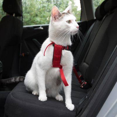 ZOOSHOP.ONLINE - Zoopreču internetveikals - Auto siksna ,krūšu siksna kaķiem Trixie