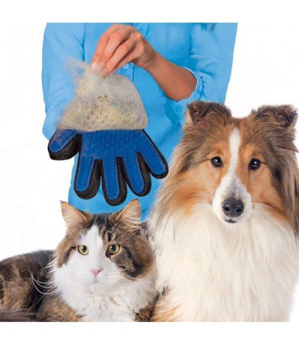 ZOOSHOP.ONLINE - Интернет-магазин зоотоваров - Перчатка для вычесывания шерсти животных