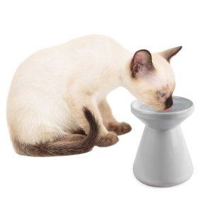 ZOOSHOP.ONLINE - Zoopreču internetveikals - Keramikas dzeramais trauks kaķiem uz kājas 150 ml